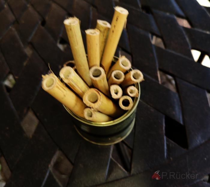 tin with bamboo-ticks