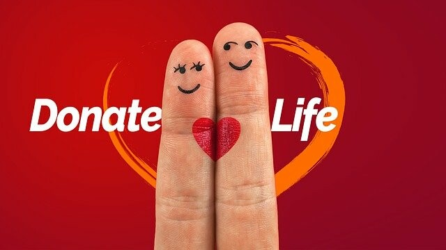 organ donation, transplantation