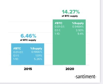 Btc small time investors chart