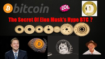 The Secret Of Elon Musk's Hype BTC❓