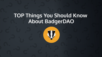 Top Things You Should Know About BadgerDAO (BADGER)
