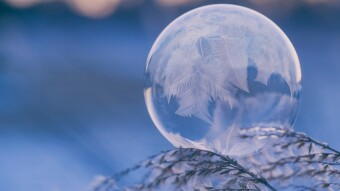 Defi Winter: What May Come After the Bubble Pops