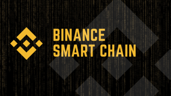Overview Of The Key Metrics On The Binance Smart Chain | Wallets, Transactions, Tokens, Contracts | January 2021