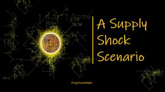 A Supply Shock Scenario