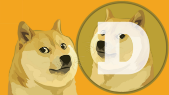 🐕 $DOGE - Long-term Investment?