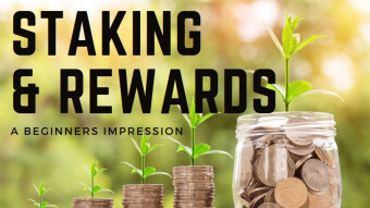 Staking & Rewards - A Beginner's Impression