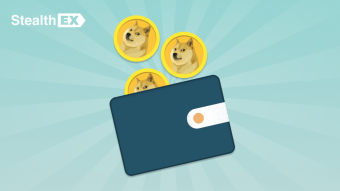 What Is The Best Crypto Wallet For Dogecoin DOGE?