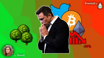 ELON MUSK's GREEN PROPOSAL for BITCOIN (and not only)🌱💡📈