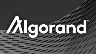 [Infographic] Why Build On Algorand