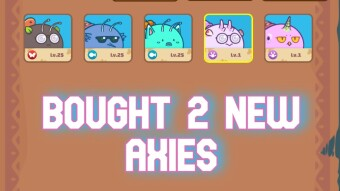 Taking advantage of the dip and buying more... Axies