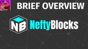 VG Brief Overview and First Impressions about NeftyBlocks