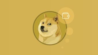 Best Dogecoin Wallet in 2021