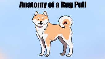Anatomy of a Rug Pull - How to Protect Yourself from Scams during Altseason