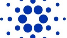 Cardano Ecosystem Set for Growth