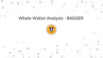 Whale Wallet Analysis - Badger