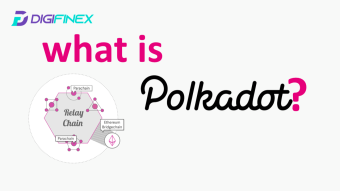 Polkadot, the King of Cross-chain Explained