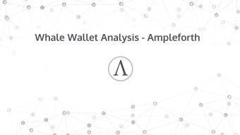 Whale Wallet Analysis - Ampleforth Update 6 Months Later