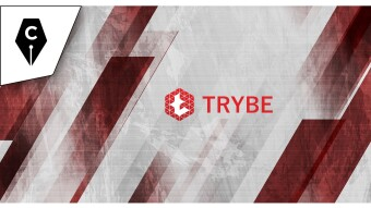 Is It Time to Join Trybe and Become Part of the Gang?