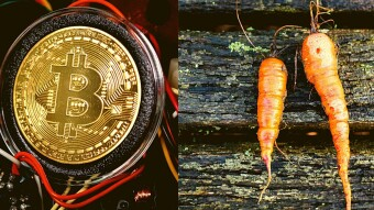 What Is Bitcoin Taproot Activation and How Does It Changes BitcoinForever?
