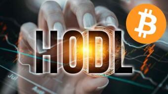 Bitcoin: A HODLER's Life For Me!
