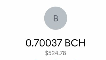 More Than $300 Profit From SmartBCH Tokens In Just 9 Days