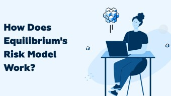 How Does Equilibrium's Risk Model Work?