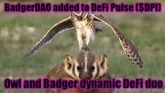 Owl met Badger - Index Coop to include BadgerDAO in DeFi Pulse ($DPI)