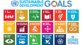 My Thought of How to Contribute to Sustainable Development Goals When I was a Young Student