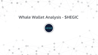 Whale Wallet Analysis - HEGIC