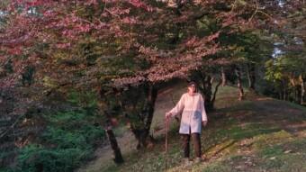 Autumn, My Favorite Season   A Hike Before Sunset