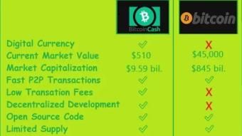 Half way through 2021 - My Bitcoin Cash ($BCH) earnings breakdown