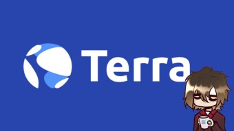 Terra in focus, the largest stablecoin creator