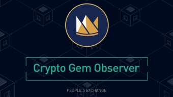 What Is Seascape Network (CWS) And How Does It Work? | KuCoin Crypto Gem Observer