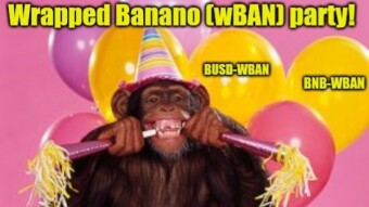 Wrapped Banano after one month - Did wBAN meet the expectations?