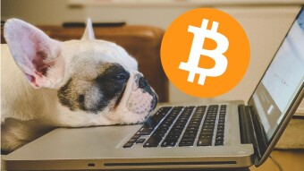 When Bitcoin is Boring; It's the Best Time to Buy!
