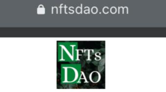 NFTsDAO Newsletter #1