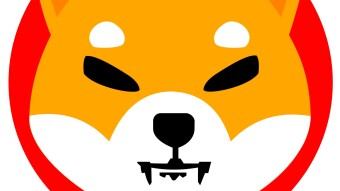 What Is Shiba Inu? Dogecoin's Potential rival ?!