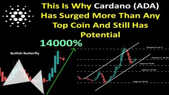 This Is Why Cardano (ADA) Has Surged More Than Any Top Coin And Still Has Potential