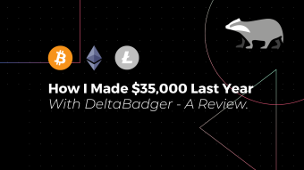 How I Made $35,000 Last Year With DeltaBadger - A Review