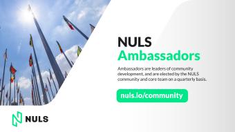 Calling All NULS Q3 Ambassador Candidates