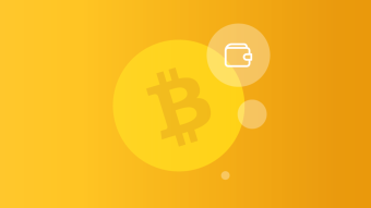 How to choose a Bitcoin wallet? A short guide