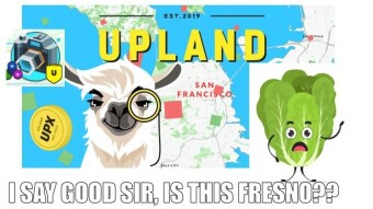 Ever Uplandward! My First SanFran Buy + Lessons and Tips from Life as a Citizen