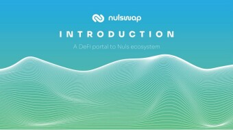 What is Nulswap? A Brief Introduction