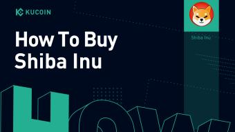 How to Buy Shiba Inu in 2021 – A KuCoin Guide