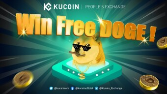 Why DogeCoin is the Best Starting Point for New Crypto Investors?