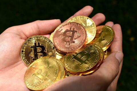 Make tons of Bitcoin at BTC Garden.
