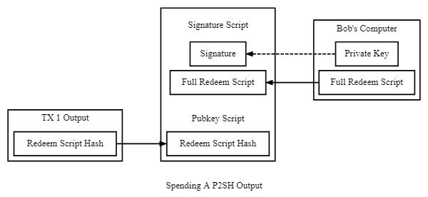 P2SH Scripts