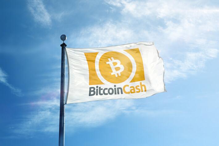 why bitcoin cash bch exist