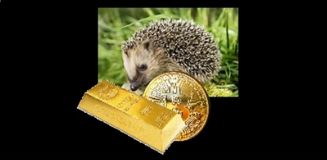 Hedge hog hedging with gold and bitcoin