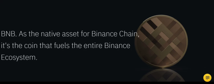 Binance Token BNB